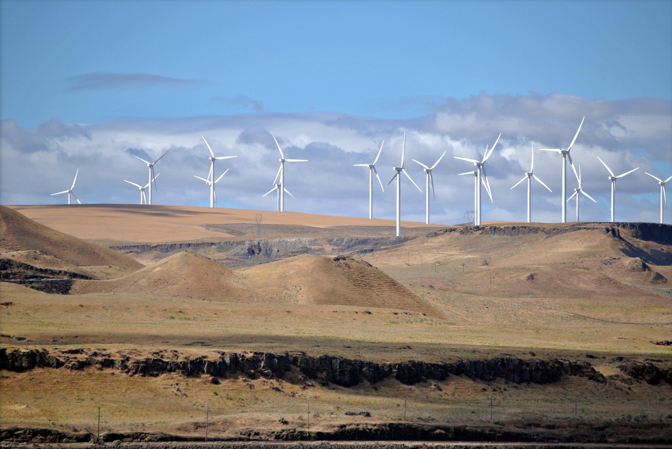 Wind_Farm_2011(wikipedia)