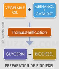 biodiesel-2
